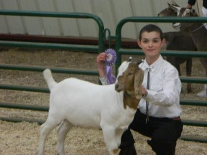 Caleb and Cleo winning Reserve Champion in showmanship at EOLS