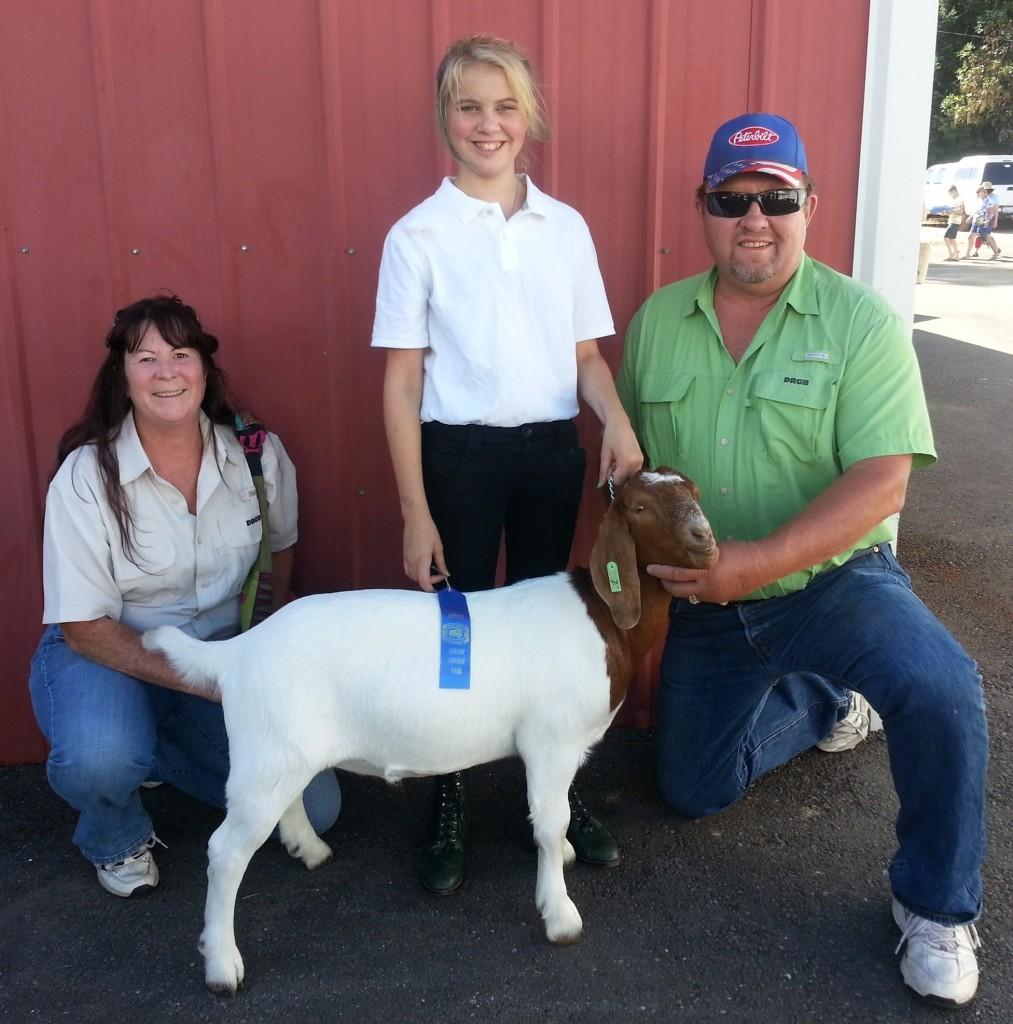 1st Place Market Goat Competition