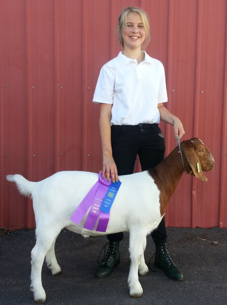 Addie and Ford Grand Champion Showmanship