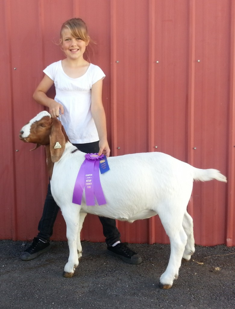 Amelia and Chevy Grand Champion Showmanship Junior Class
